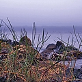 Just Over The Rocks by Debra Forand