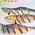Just Sardines by Olivier Calas