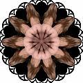 K5067 Sexual Mandala For Erotic Spirituality by Chris Maher