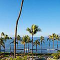 Kaanapali Maui Resort   by Lars Lentz