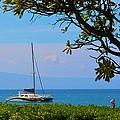 Kahanapali Beach Maui by Richard Jenkins