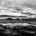 Kaikoura Coast New Zealand In Black And White by Amanda Stadther