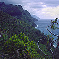 Kalalau Beginnings by Morris  McClung