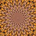 Kaleidoscope 2 by Ron Bissett