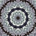 Kaleidoscope 63 by Ron Bissett