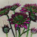 Kaleidoscope Bouquet by Judy Vincent