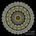 Kaleidoscope Ernst Haeckl Sea Life Series Steampunk Feel by Amy Cicconi