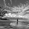Kanahna Beach Maui Hawaii Panoramic by Edward Fielding
