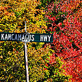 Kancamagus Scenic Byway by Luke Moore
