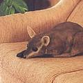 Kangaroo Buddy Sculpture by Arlene Delahenty