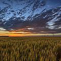 Kansas Color by Thomas Zimmerman