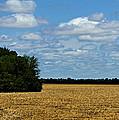 Kansas Fields by Jeanette C Landstrom