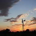 Kansas Golden Sky With A Windmill by Robert D  Brozek
