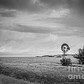 Kansas Prairie Bw by Michael Ver Sprill