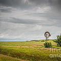 Kansas Prairie by Michael Ver Sprill