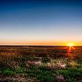 Kansas Sunrise by Jay Stockhaus