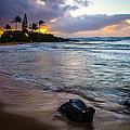 Kapa'a Kauai Sunrise by Richard Cheski