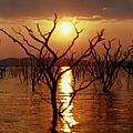 Kariba Sunset by Jeremy Hayden