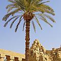 Karnak Temple 03 by Antony McAulay
