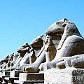 Karnak Temple Statue 14 by Antony McAulay