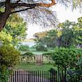 Kasane, Botswana - View Of The Chobe by Edwin Remsberg