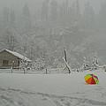 Kashmir In Winter by Bhaswaran Bhattacharya