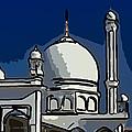 Kashmir Mosque 2 by Steve Harrington