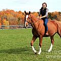 Katherine Pal 21 by Life With Horses