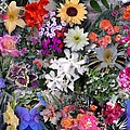 Kathy's Flowers Collage by Bob Semk