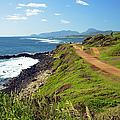 Kauai Coast by Kicka Witte