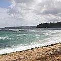 Kauai Shore Looking South by Dick Willis