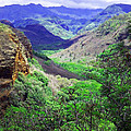 Kauai Valley by Catherine Rogers