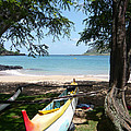Kauai Watersports by Dee  Savage