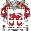 Kavanaugh Coat Of Arms Irish by Heraldry