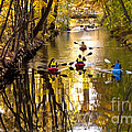 Kayaking 2 by Mike Nellums