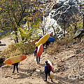 Kayakers Carry Their Kayaks Down To The Potomac River Near Great Falls In Maryland. by William Kuta