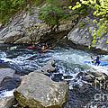 Kayaking Baby Falls by Paul Mashburn
