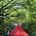 Kayaking Backwater Mississippi 1 by John Brueske
