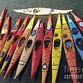 Kayaks by Elizabeth-Anne King