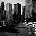 Kayaks On The Chicago River - Black by Frank J Casella