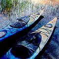 Kayaks Resting W Metal by Anita Burgermeister