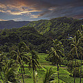 Keanae Morning by James Roemmling