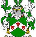 Kearns Coat Of Arms Irish by Heraldry