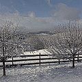 Kedron Valley After A Snow by Mark J Curran