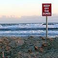 Keep Off The Dunes by Ed Weidman