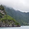 Kenai Fjords Alaska by Shishir Sathe