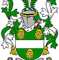 Kennagh Coat Of Arms Irish by Heraldry