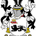 Kennelly Coat Of Arms Irish by Heraldry