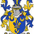 Kenney Coat Of Arms Irish by Heraldry
