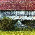 Kentucky Barn In Summer by George Ferrell